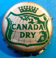 CAPSULE CANADA DRY - Soda