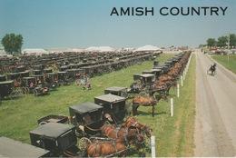 18 / 6 /  25  -    AMISH  COUNTRY   -  CPM - Etats-Unis