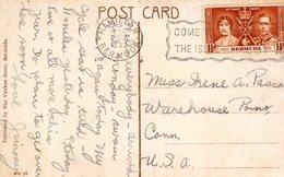6 OCT 1937 PC From Hamilton To Warehouse  Connecticut USA - Bermuda