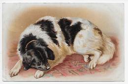 Dorothy Travers Pope? - Dog - 1900-1949