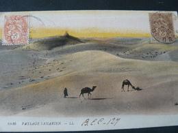 1918 ANCIENT BEAUTIFUL POSTCARD  FROM  SAHARIEN TO  U.S.A ..// BELLA CARTOLINA DALLA  FRANCIA  PER GLI U.S.A - TAAF : Terres Australes Antarctiques Françaises