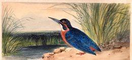 Martin-Pêcheur  D'Europe. Aquarelle. 12,5  X  5,7  Cm.collée Sur Papier. - Watercolours