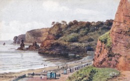 AN36 The Bathing Beach, Dawlish - C1919 A.R. Quinton Postcard, Postage Due - England