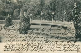 Ansichtskarte Babelsberg-Potsdam Generalsbank Im Park 1904 - Potsdam