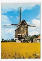 WORMHOUDT - N° 10/4513 - LE MOULIN - CPSM GF NON VOYAGEE - Wormhout