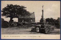 29 TREBOUL Le Vieux Calvaire - Animée - Tréboul