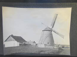 PHOTO Windmühle Wind Mill Photo 20x13 Cm A Passpartout  RRR! ///  D*32198 - Rumänien