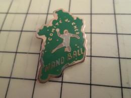 Pin715a : Pin's Pins / RARE & BELLE QUALITE / THEME : SPORTS / HAND-BALL  COMITE DU CHER - Handball