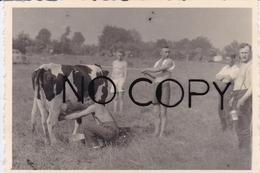 PHOTO ORIGINALE 39 / 45 WW2 WEHRMACHT FRANCE BRETAGNE 1940 UN PEU DE LAIT POUR LES SOLDATS ALLEMANDS - Guerre, Militaire