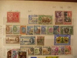 British Honduras - Lotto - Honduras Britannico (...-1970)