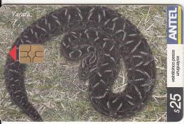 URUGUAY - Snake, Yarara(341a), 08/04, Used - Uruguay