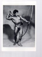 REF EX  : CPM Grand Format - Culture Physique Pictorial Homme Muscle Gay Nu Masculin Tir à L'arc - Cartes Postales