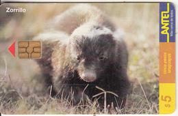 URUGUAY - Animal, Zorillo(95a), 12/99, Used - Uruguay