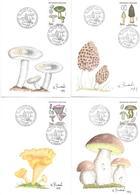 4 Cp. Illustrateur Robert Renard. Champignons  .1987. - Exemplaires Uniques- - Other Illustrators