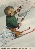 Künstlerkarte AK Mecki Sonne Und Schnee Ich Bin Ok Ski Igel Comic Figur Comicfigur Diehl Hör Hörzu Igelkarte Serie 368 - Mecki