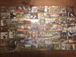 150 Sports Cards Blue Band - Complete Set - 1954 - Sport