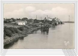 29 - ROCHE MAURICE - Les Quais (cpsm 9x14) Port Et Grue - Francia