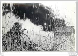 Press Photo - Russia - Scorched Earth In The Ukrainia Ukraine 1941/42 - War, Military