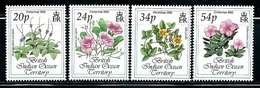 "British Indian Ocean Territory    ""Flowers-Christmas""     Set   SC# 141-44   MNH - British Indian Ocean Territory (BIOT)"