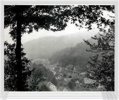 Press Photo - GERMANY - Solingen - A Pretty View Of Burge (or Burgen) Near Solingen - Lieux
