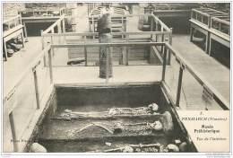 29 - PENMARCH - Squelette Geant De 2m10 Au Musee Prehistorique  - Archeologie - Penmarch