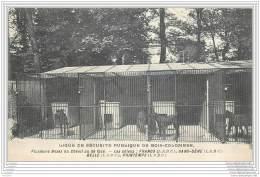 92 - BOIS COLOMBES - Ligue De Securite Publique - Boxes Du Chenil Avec Le Nom Des Chiens (S.P.A.) - Autres Communes