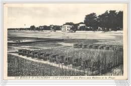 33 - CAP FERRET - Parc Aux Huitres - France