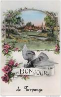 Belgique - Un Bonjour De TURPANGE 1960's - Messancy