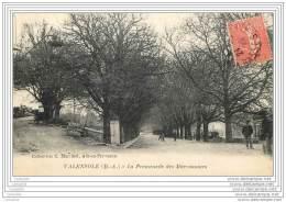 04 - VALENSOLE - La Promenade Des Marronniers - France