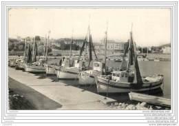 83 - CARQUEIRANNE - La Flotille De Peche Au Port Des Salettes (cpsm 9x14) - Carqueiranne