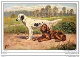 Chiens - Setter Anglais Et Setter Irlandais - Dogs