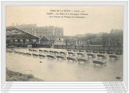 75014 - PARIS - Crue Janvier 1910 - Depot De La Compagnie D'Orleans - Voitures De Factage Submergees - Omnibus - Arrondissement: 14