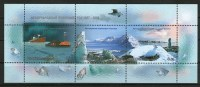 Antarctic Arctic - Russie 2007 Année Polaire Internationale - Polar Year BF294 ** - Timbres