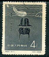 Y85 CHINA 1958 369 Chinese Fossils - 1949 - ... Repubblica Popolare