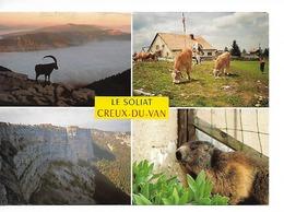 SUISSE/ LE SOLIAT - Creux-du-Van Alt. 1386 M/ CPM Multivues -4- : Ferme, Vache, Marmotte, Bouquetin & Cirque / B.E. - NE Neuchâtel
