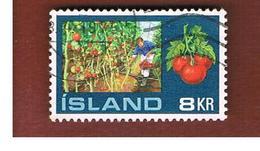 ISLANDA (ICELAND)  -  SG 496 - 1972   TOMATOES                               -   USED - 1944-... Repubblica