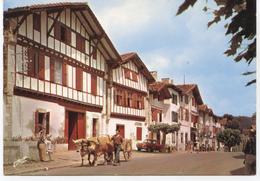 64..AINHOA  MAISONS BASQUES 1971+ ATTELAGE ET DAUPHINE - Autres Communes