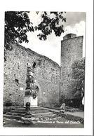 MONTEMIGNAIO - MONUMENTO E MURA CASTELLO- VIAGGIATA FG - Arezzo