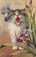CHAT Illustrateur BOULANGER  Langage Des Fleurs  IRIS - Katten