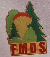 Pin's Champignon . Mycologie . FMDS . Bolet . Cépe - Food