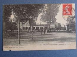 82- FINHAN -Tarn & Garonne -Promenade Des Tilleuls _ A-Bouis-photographe,Montauban. - France