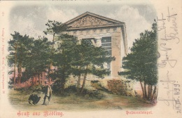 Gruss Aus MÖDLING Gel.1899 - Mödling