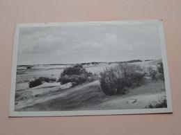 KALMTHOUTSE-HEIDE ( Uitg. Yv. De Smet Heide ) Anno 19?? ( Zie Foto Details ) ! - Kalmthout