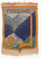 Insigne De Bras Du Chantiers De La Jeunesse Françaises N° 20 Turenne - Scudetti In Tela