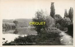 78 Croissy, L'Ile De La Grenouillère, Cliché Pas Courant - Croissy-sur-Seine