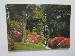 Lago Di Como. Villa Carlotta. Il Parco. Brunner 110-036 Postmarked 1985. - Italie