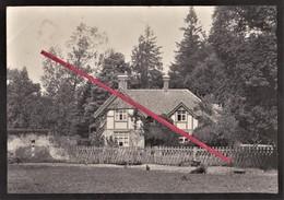 NEW FOREST -- Boldre Lodge _ Wood _ Ferme = Farm _ England _ Photo Originale / Original Photography - Lieux