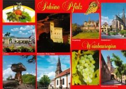 Schone Pfalz, Weinbauregion, Germany Unused - Germany