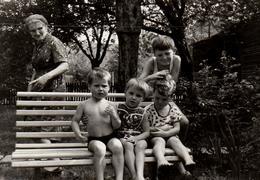 Photo Originale La Vie Du Banc - Tatie Danielle Et Ses Petits Enfants Au Jardin En 1969 - Personnes Anonymes
