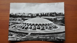 Palazzetto Dello Sport Al Flaminio - Stadiums & Sporting Infrastructures